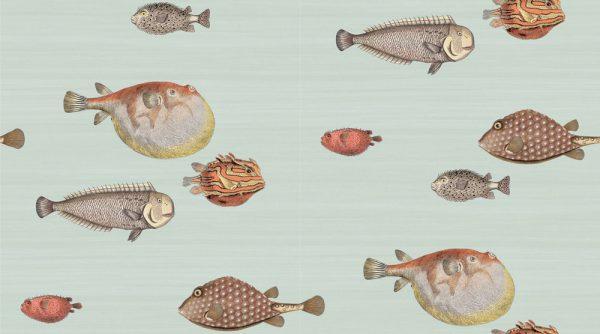 97-10030 acquario