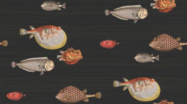 97-10048-acquario
